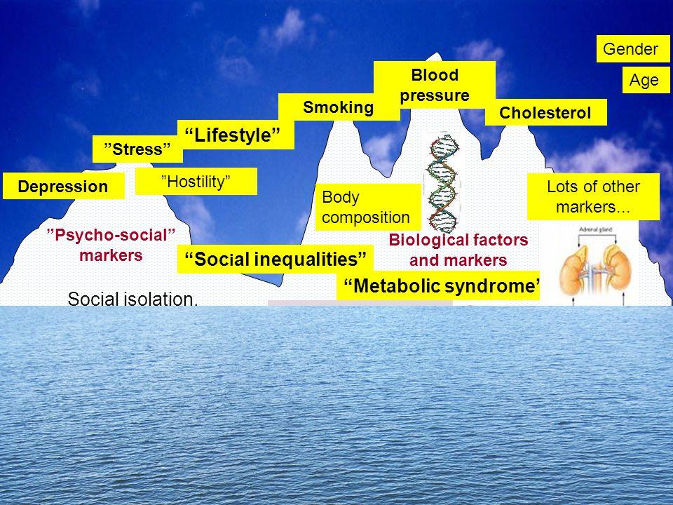 "Cholesterol Smoking Blood pressure ""Psycho-social"" markers Depression ""Hostility"" ""Stress"" High demand - low control, High effort - low reward, Unfair"