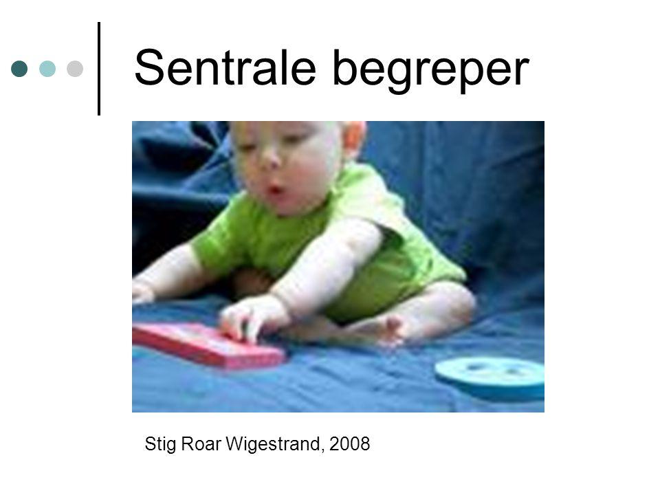 Sentrale begreper Stig Roar Wigestrand, 2008