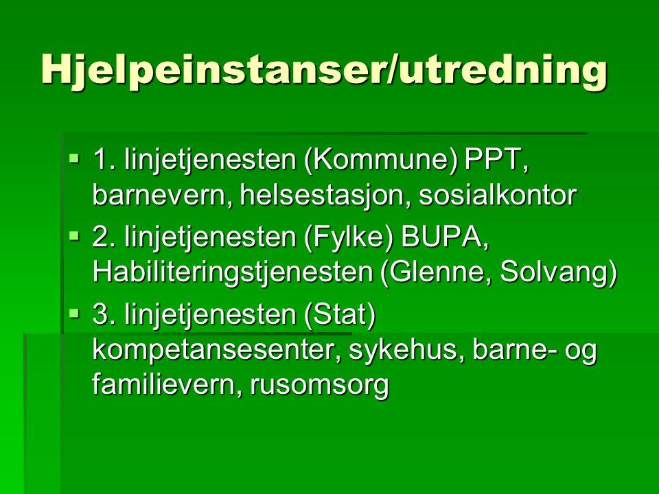 Hjelpeinstanser/utredning  1. linjetjenesten (Kommune) PPT, barnevern, helsestasjon, sosialkontor  2. linjetjenesten (Fylke) BUPA, Habiliteringstjen
