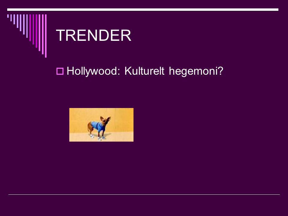TRENDER  Hollywood: Kulturelt hegemoni
