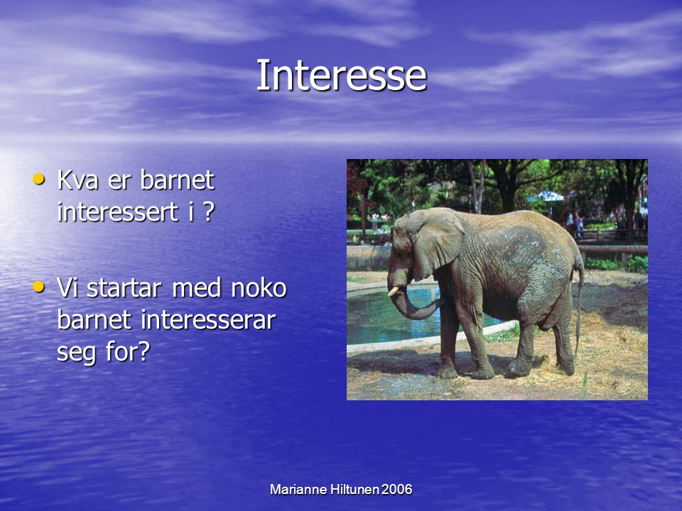Marianne Hiltunen 2006 Meistring Når barnet får ei kjensle av å meistre, så ynskjer det å lære meir.