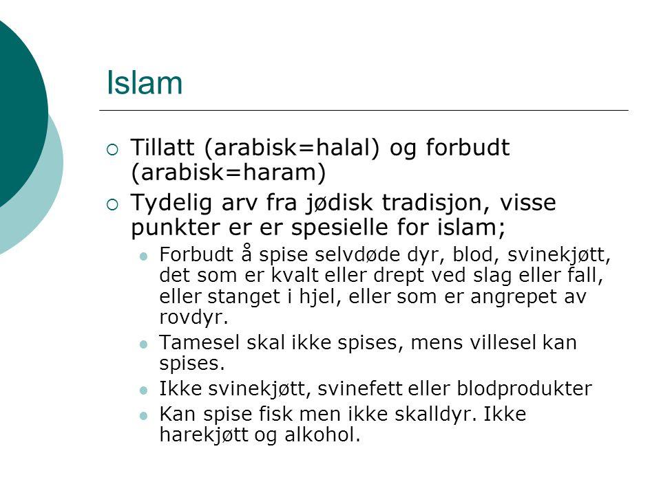 Islam  Tillatt (arabisk=halal) og forbudt (arabisk=haram)  Tydelig arv fra jødisk tradisjon, visse punkter er er spesielle for islam; Forbudt å spis