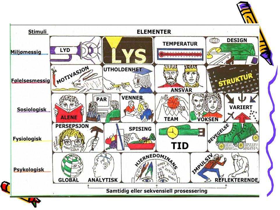 Dunn og Dunns Læringsstilsmodell