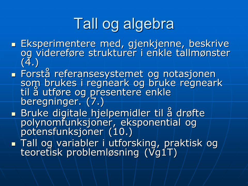 Tall og algebra Eksperimentere med, gjenkjenne, beskrive og videreføre strukturer i enkle tallmønster (4.) Eksperimentere med, gjenkjenne, beskrive og