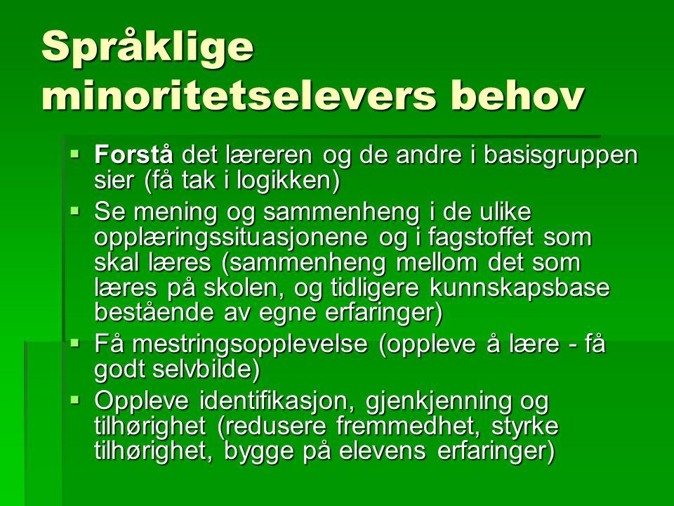 Språklige minoritetselevers behov  Forstå det læreren og de andre i basisgruppen sier (få tak i logikken)  Se mening og sammenheng i de ulike opplær