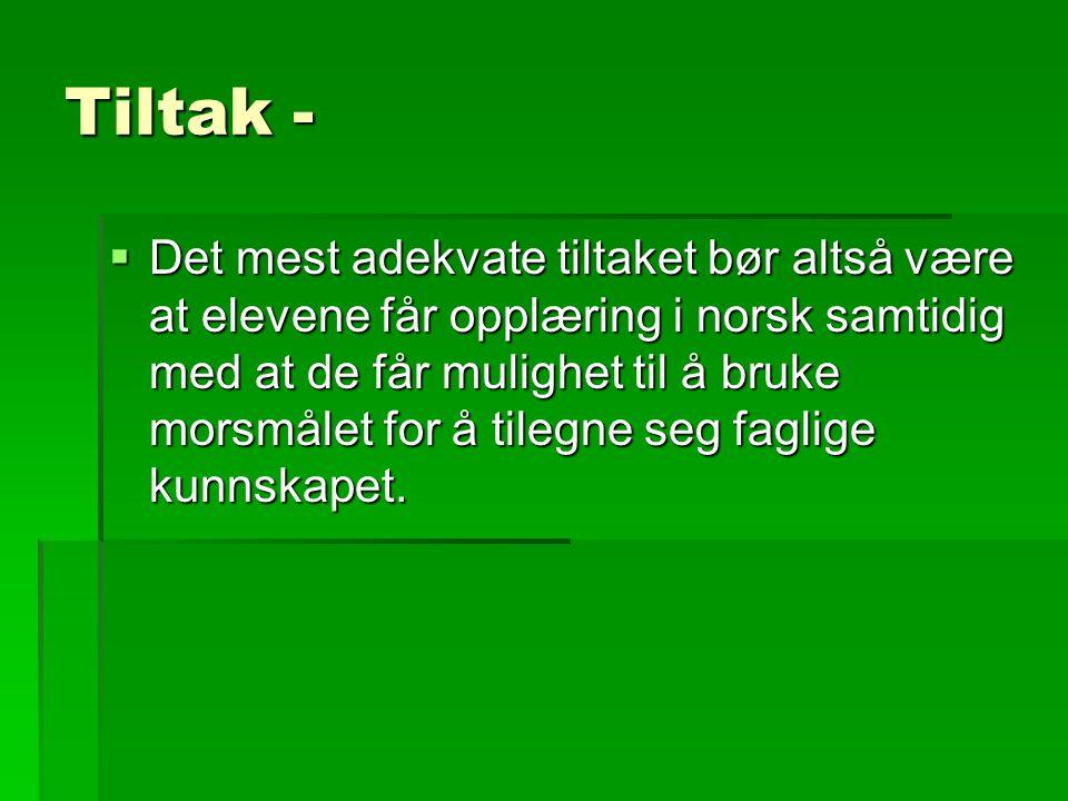 Tiltak -  Det mest adekvate tiltaket bør altså være at elevene får opplæring i norsk samtidig med at de får mulighet til å bruke morsmålet for å tile