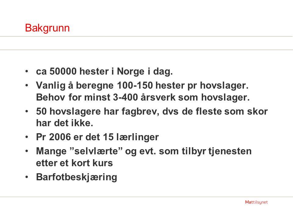 Bakgrunn ca 50000 hester i Norge i dag. Vanlig å beregne 100-150 hester pr hovslager. Behov for minst 3-400 årsverk som hovslager. 50 hovslagere har f