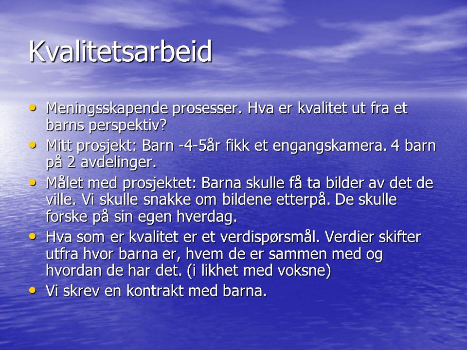 Forskeren som en guide KLARER DE VOKSNE Å LYTTE OG SE BARNAS ØNSKER.