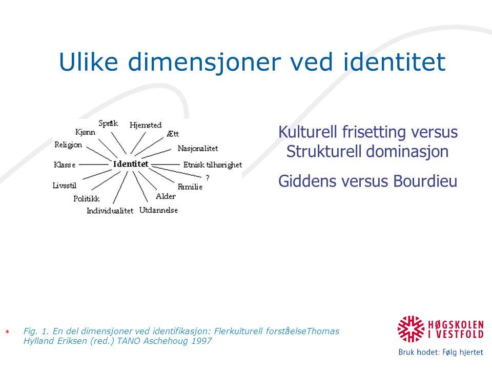 Ulike dimensjoner ved identitet Fig.1.