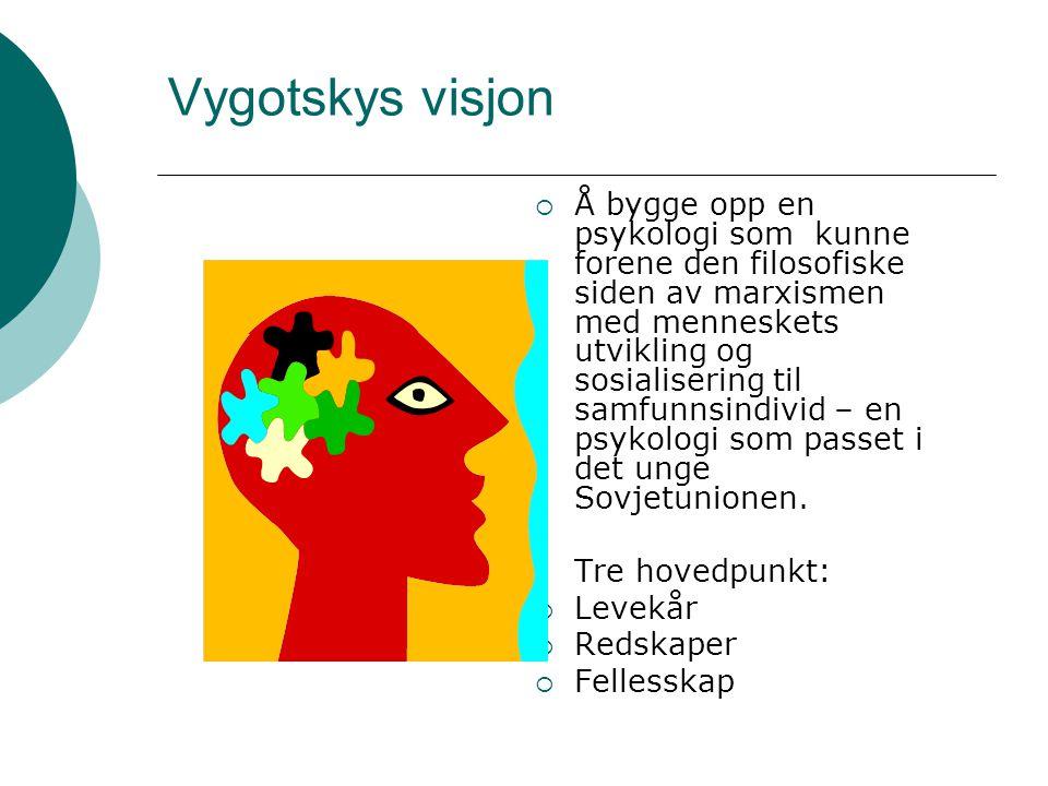Vygotskys visjon  Å bygge opp en psykologi som kunne forene den filosofiske siden av marxismen med menneskets utvikling og sosialisering til samfunnsindivid – en psykologi som passet i det unge Sovjetunionen.