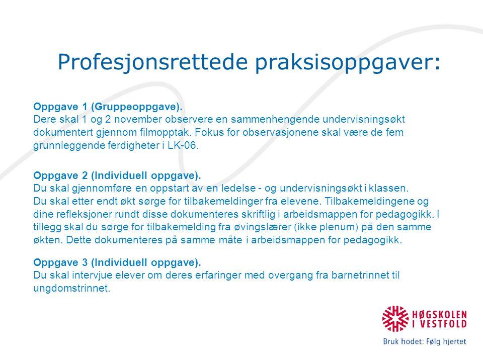 Profesjonsrettede praksisoppgaver: Oppgave 1 (Gruppeoppgave).
