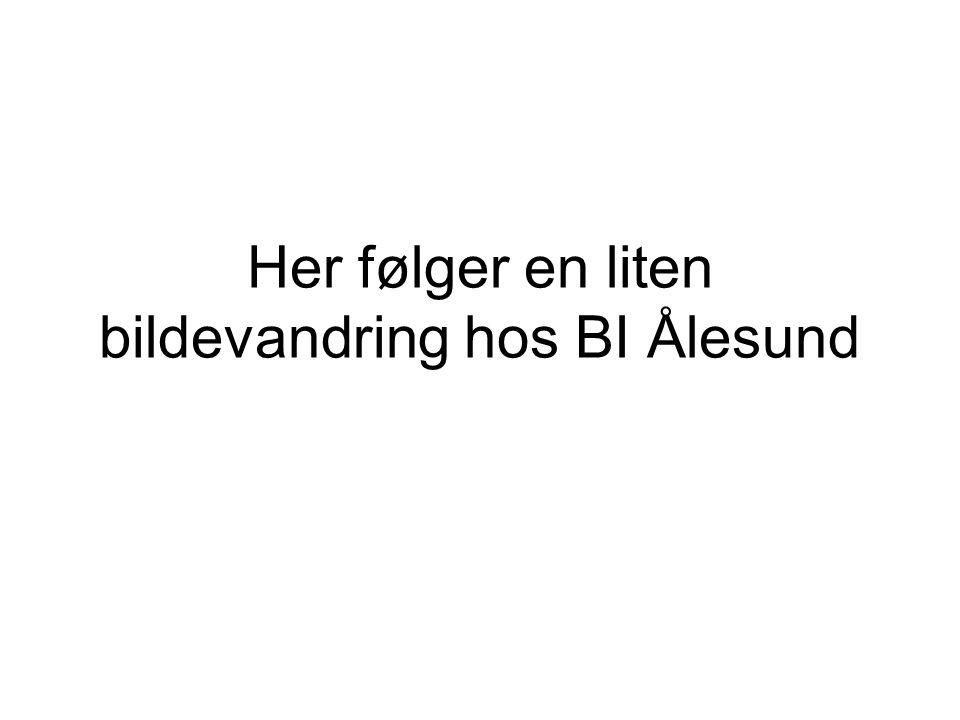 Her følger en liten bildevandring hos BI Ålesund