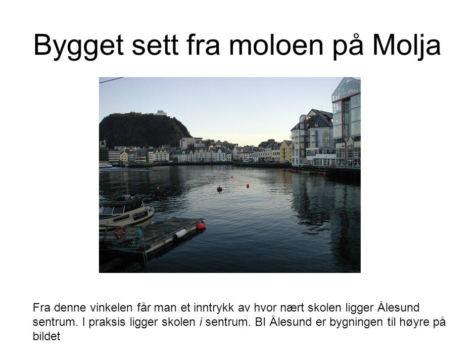 Bygget sett fra moloen på Molja Fra denne vinkelen får man et inntrykk av hvor nært skolen ligger Ålesund sentrum.