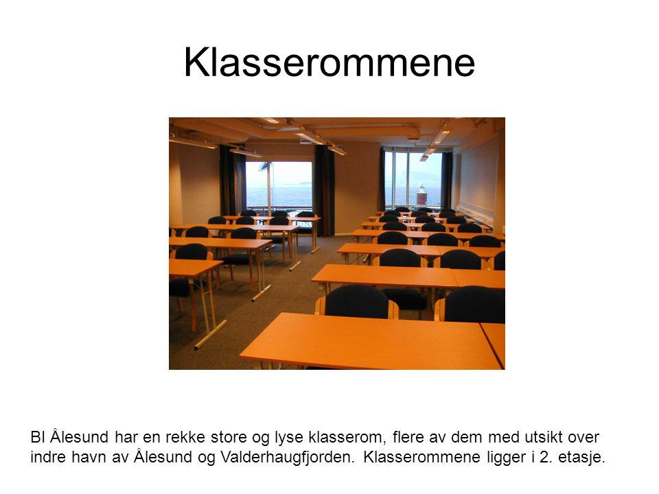 Klasserommene BI Ålesund har en rekke store og lyse klasserom, flere av dem med utsikt over indre havn av Ålesund og Valderhaugfjorden.