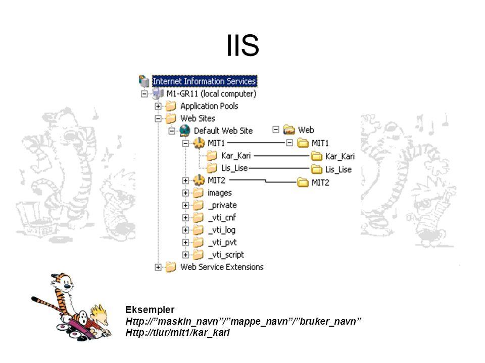 IIS Eksempler Http:// maskin_navn / mappe_navn / bruker_navn Http://tiur/mit1/kar_kari