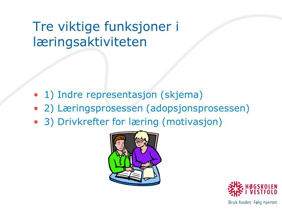 Tre viktige funksjoner i læringsaktiviteten 1) Indre representasjon (skjema) 2) Læringsprosessen (adopsjonsprosessen) 3) Drivkrefter for læring (motivasjon)