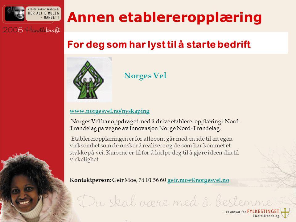 Annen etablereropplæring For deg som har lyst til å starte bedrift www.norgesvel.no/nyskaping Norges Vel har oppdraget med å drive etablereropplæring i Nord- Trøndelag på vegne av Innovasjon Norge Nord-Trøndelag.