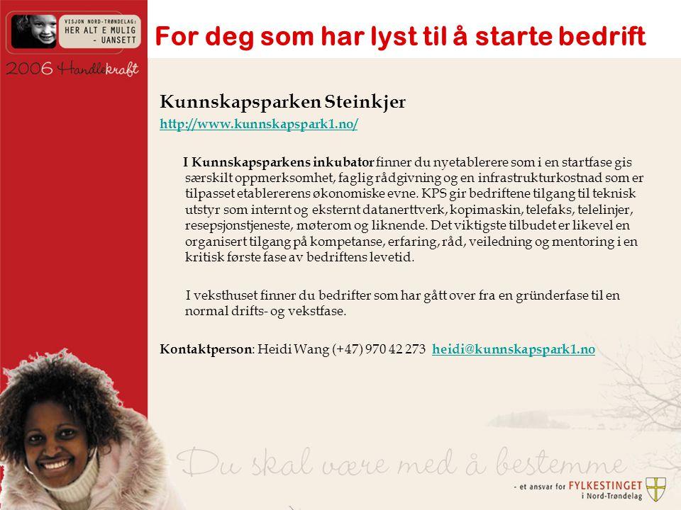 Kunnskapsparken Steinkjer http://www.kunnskapspark1.no/ I Kunnskapsparkens inkubator finner du nyetablerere som i en startfase gis særskilt oppmerksomhet, faglig rådgivning og en infrastrukturkostnad som er tilpasset etablererens økonomiske evne.