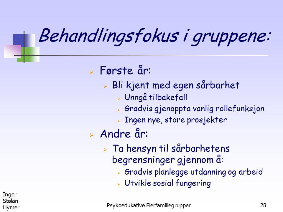 Inger Stølan Hymer Psykoedukative Flerfamiliegrupper28 Behandlingsfokus i gruppene:  Første år:  Bli kjent med egen sårbarhet  Unngå tilbakefall 