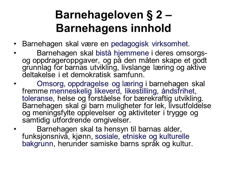Barnehageloven § 2 – Barnehagens innhold Barnehagen skal være en pedagogisk virksomhet.