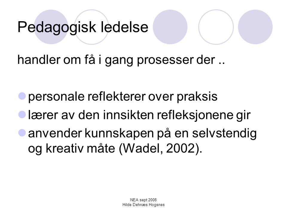 NEA sept 2008 Hilde Dehnæs Hogsnes Pedagogisk dokumentasjon krever øvelse og nye ferdigheter Materialet og refleksjonen (Alnervik, 2005).