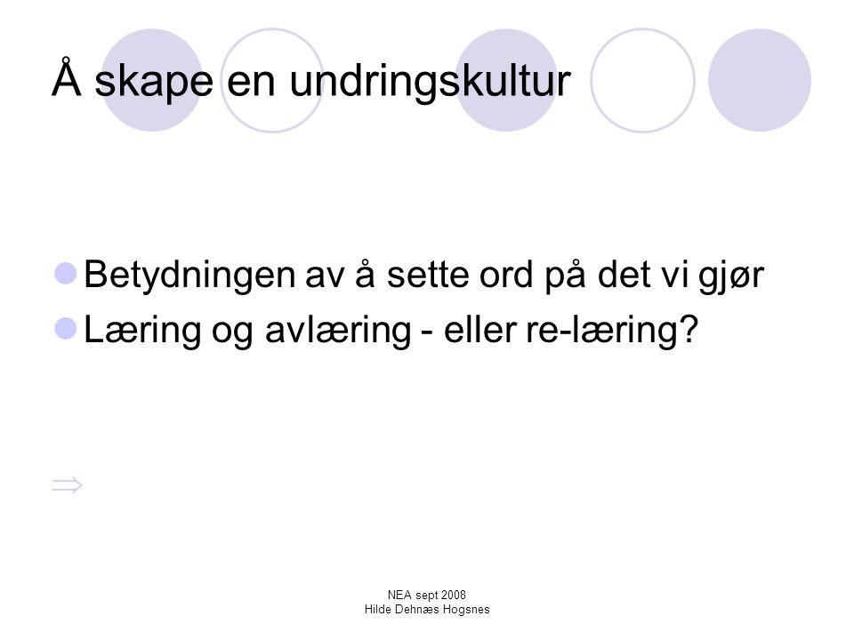 NEA sept 2008 Hilde Dehnæs Hogsnes Å skape en undringskultur – en lekende tilnærming til læring.