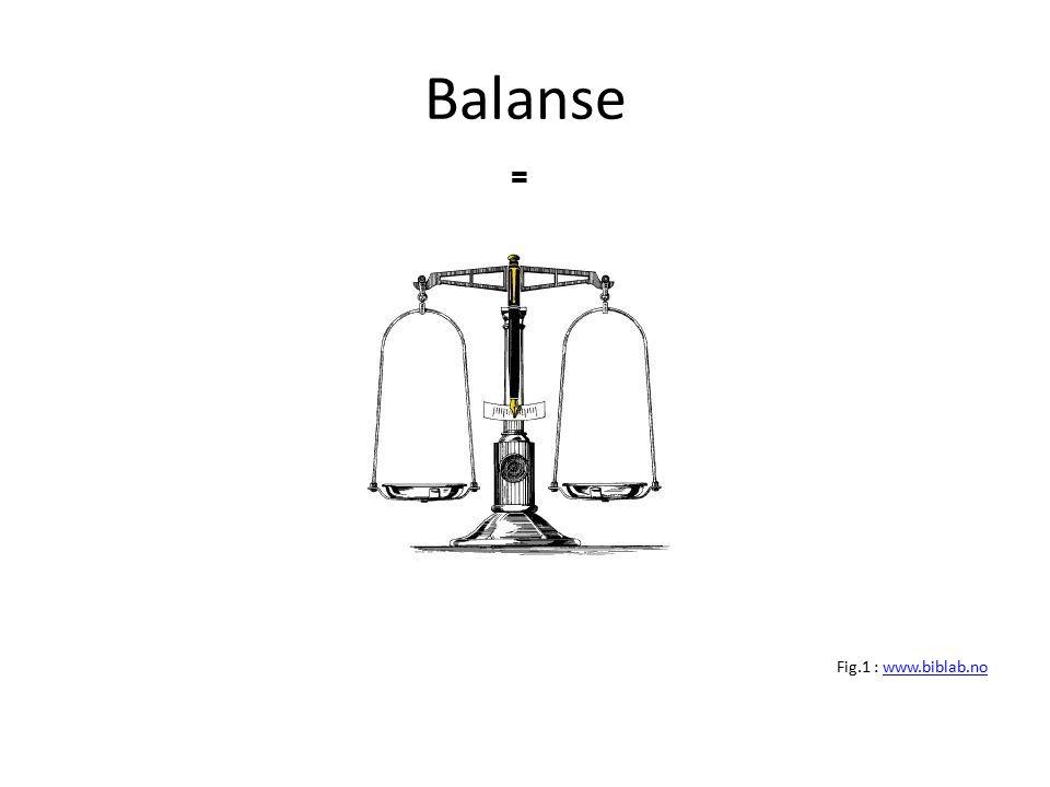 Balanse Fig.1 : www.biblab.nowww.biblab.no =