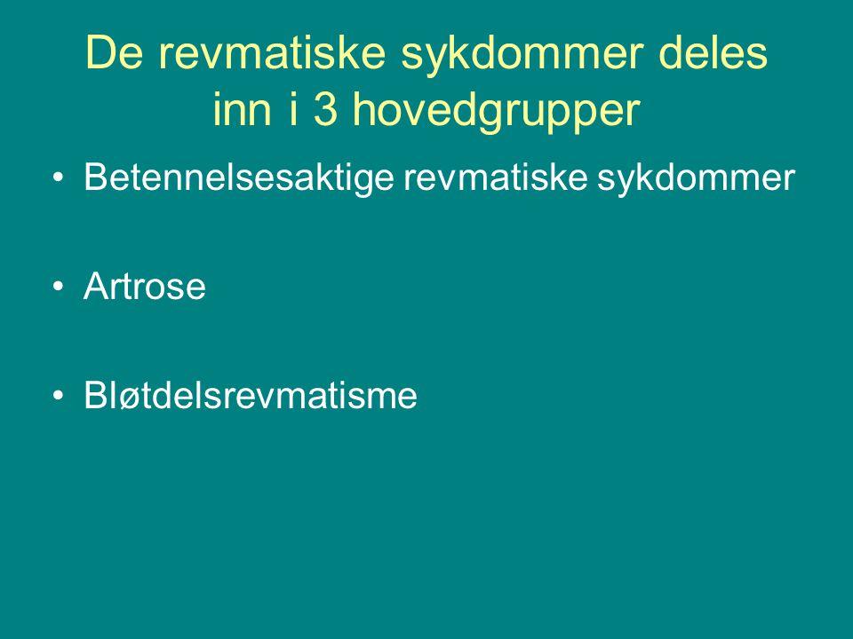 De revmatiske sykdommer deles inn i 3 hovedgrupper Betennelsesaktige revmatiske sykdommer Artrose Bløtdelsrevmatisme