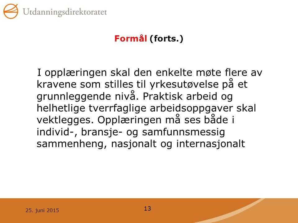 25. juni 2015 13 Formål (forts.) I opplæringen skal den enkelte møte flere av kravene som stilles til yrkesutøvelse på et grunnleggende nivå. Praktisk