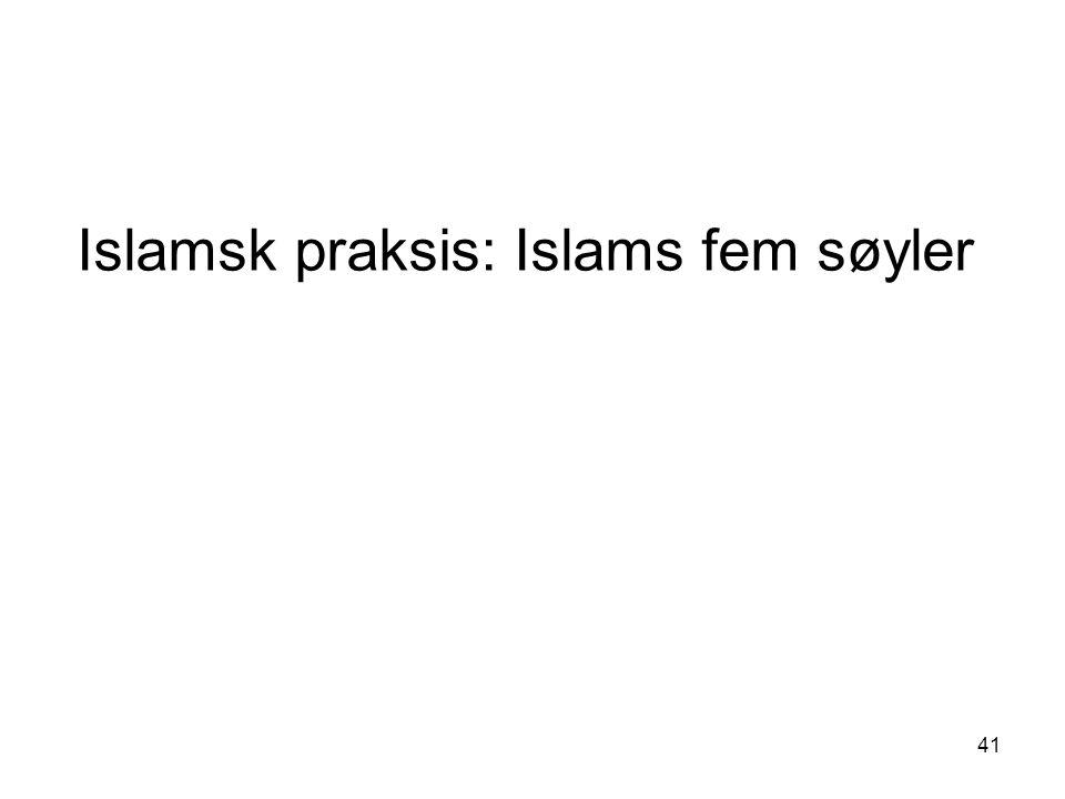 41 Islamsk praksis: Islams fem søyler
