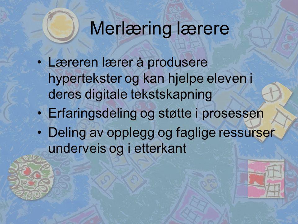 Merlæring lærere Læreren lærer å produsere hypertekster og kan hjelpe eleven i deres digitale tekstskapning Erfaringsdeling og støtte i prosessen Deling av opplegg og faglige ressurser underveis og i etterkant