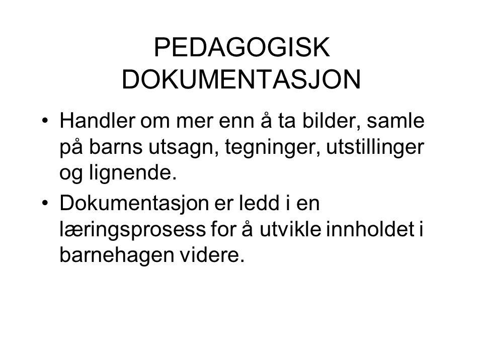 PEDAGOGISK DOKUMENTASJON Bevisførsel ved fremlegg av dokumenter, for eksempel tekst, lydopptak, film, foto.