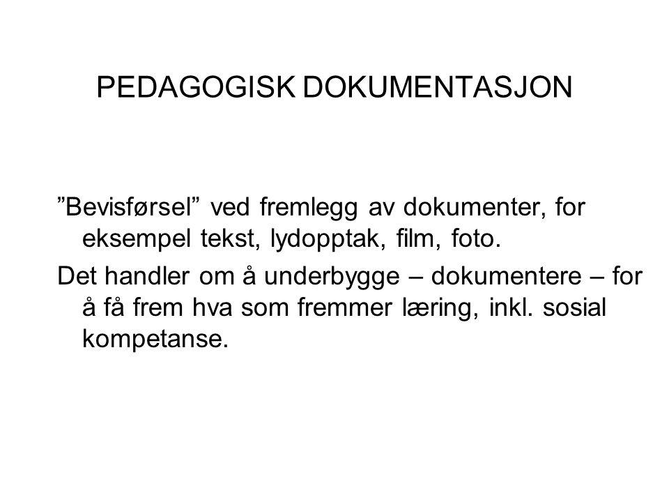 """PEDAGOGISK DOKUMENTASJON """"Bevisførsel"""" ved fremlegg av dokumenter, for eksempel tekst, lydopptak, film, foto. Det handler om å underbygge – dokumenter"""