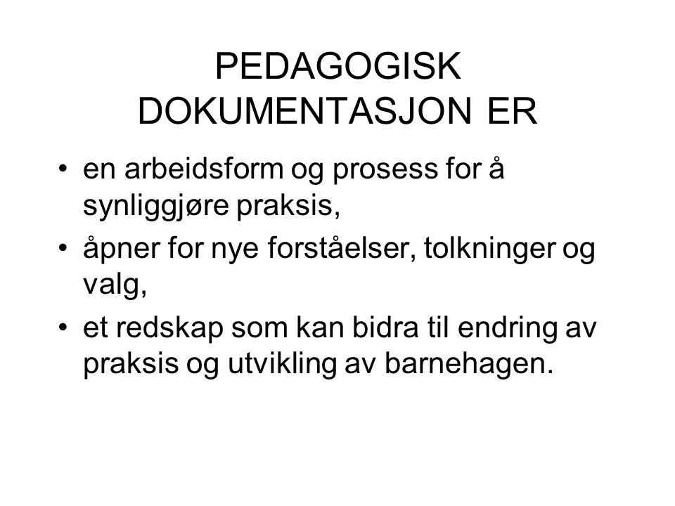 PEDAGOGISK DOKUMENTASJON TODELT: Både innhold og prosess (Dahlberg m.fl.