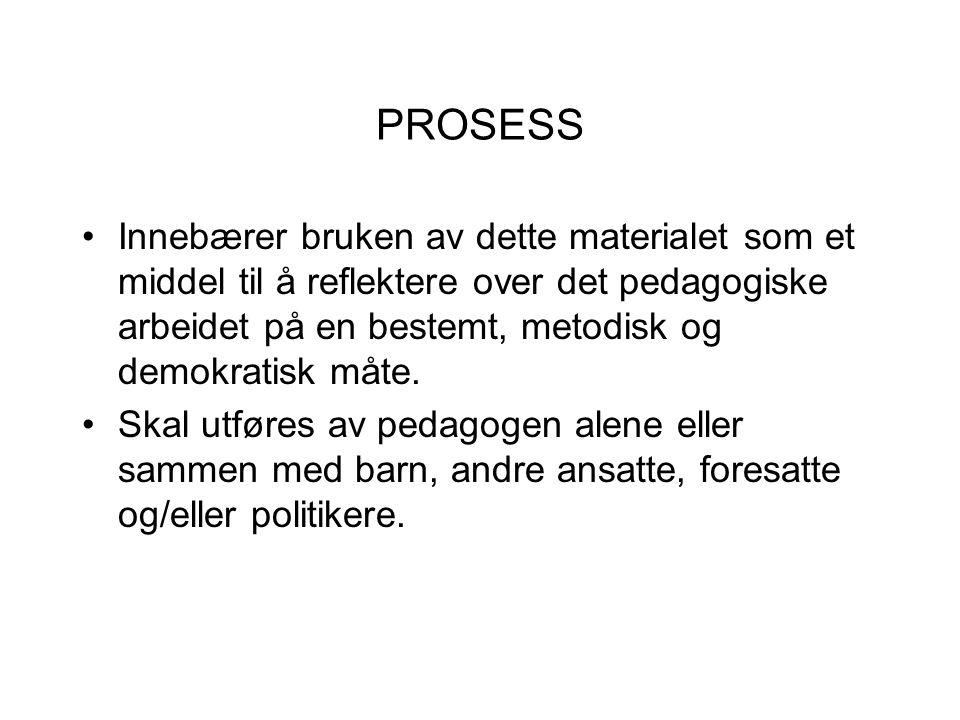 PROSESS Innebærer bruken av dette materialet som et middel til å reflektere over det pedagogiske arbeidet på en bestemt, metodisk og demokratisk måte.