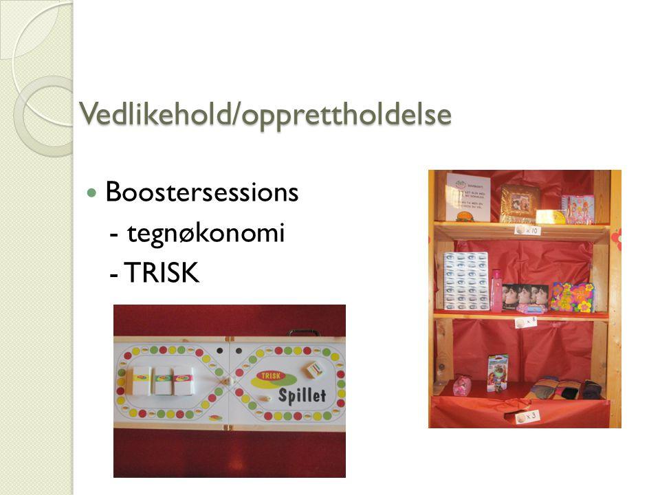 Vedlikehold/opprettholdelse Boostersessions - tegnøkonomi - TRISK