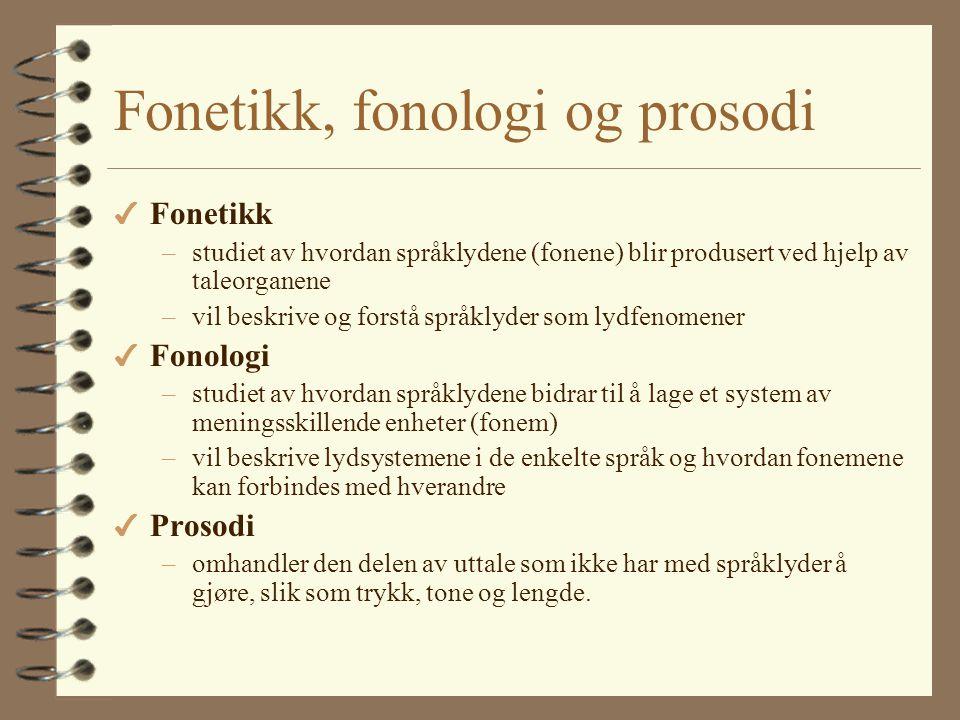 Er norsk vanskelig? 4 Alt man kan er lett… 4 Språk kan likne på hverandre på ulike måter 4 Kunnskap om eget språk gjør det enklere å lære et nytt