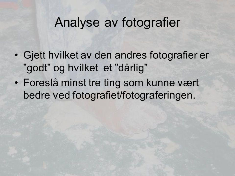 Analyse av fotografier Gjett hvilket av den andres fotografier er godt og hvilket et dårlig Foreslå minst tre ting som kunne vært bedre ved fotografiet/fotograferingen.