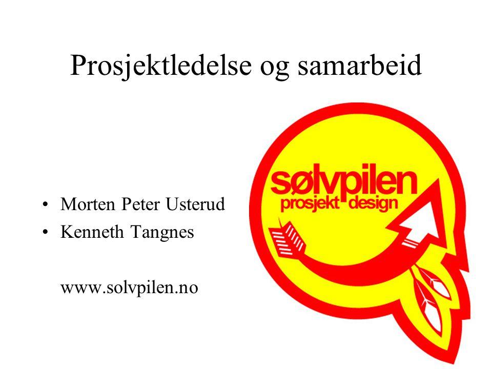 Prosjektledelse og samarbeid Morten Peter Usterud Kenneth Tangnes www.solvpilen.no