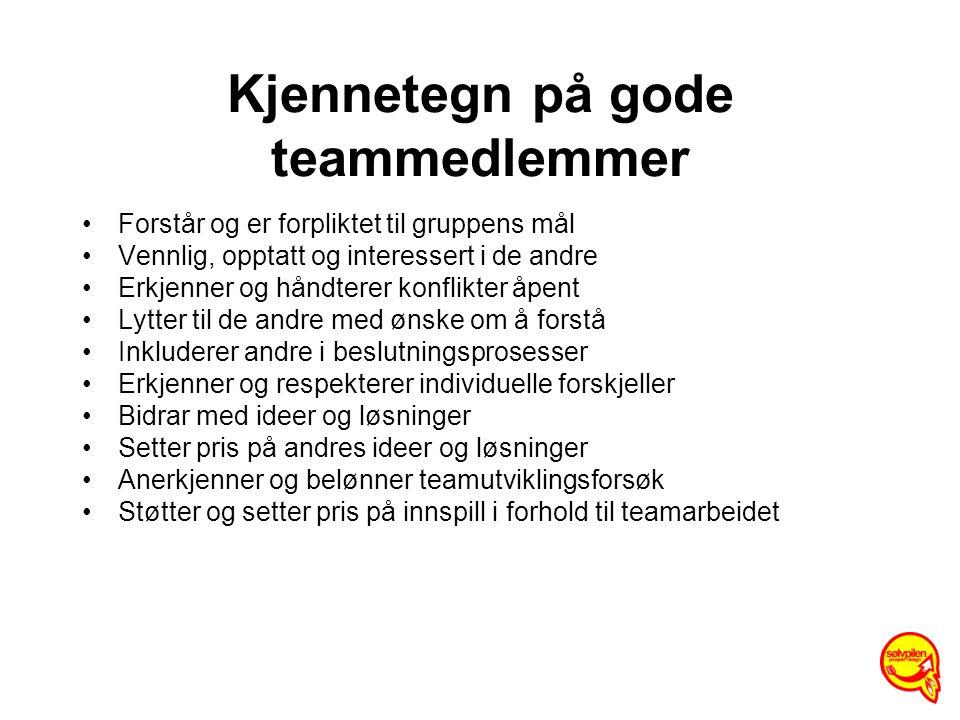 Kjennetegn på gode teammedlemmer Forstår og er forpliktet til gruppens mål Vennlig, opptatt og interessert i de andre Erkjenner og håndterer konflikte