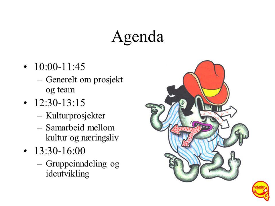 Agenda 10:00-11:45 –Generelt om prosjekt og team 12:30-13:15 –Kulturprosjekter –Samarbeid mellom kultur og næringsliv 13:30-16:00 –Gruppeinndeling og ideutvikling