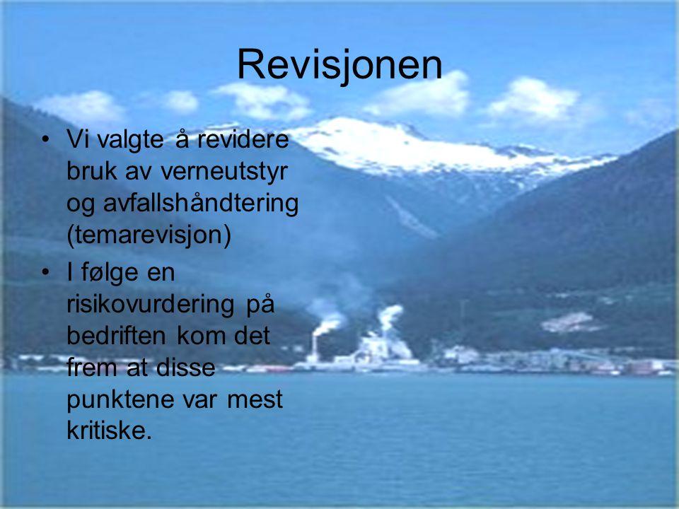 Revisjonen Vi valgte å revidere bruk av verneutstyr og avfallshåndtering (temarevisjon) I følge en risikovurdering på bedriften kom det frem at disse