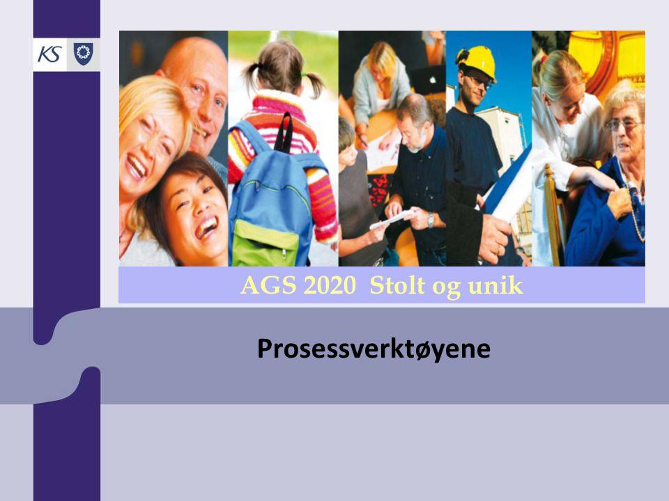 2009 Verktøy 9: Mangfold og inkludering Tilgang til ny arbeidskraft og ny kompetanse Bedre omdømme - Organisasjonen forbindes med mangfold og like rettigheter Større bredde i erfaringer og fagmiljø