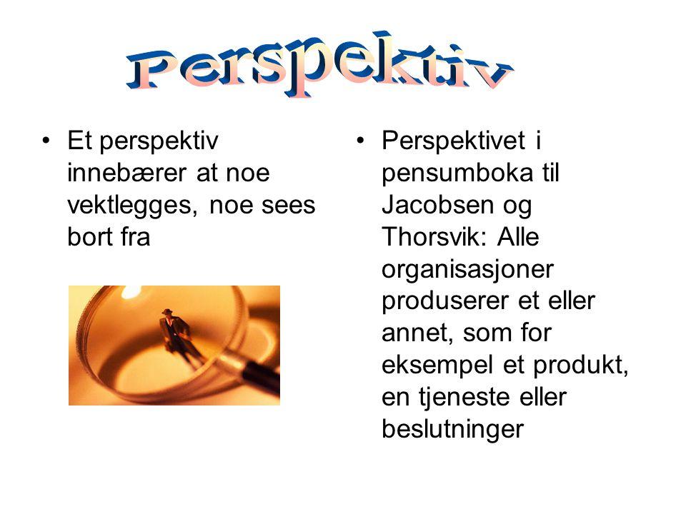 Et perspektiv innebærer at noe vektlegges, noe sees bort fra Perspektivet i pensumboka til Jacobsen og Thorsvik: Alle organisasjoner produserer et eller annet, som for eksempel et produkt, en tjeneste eller beslutninger