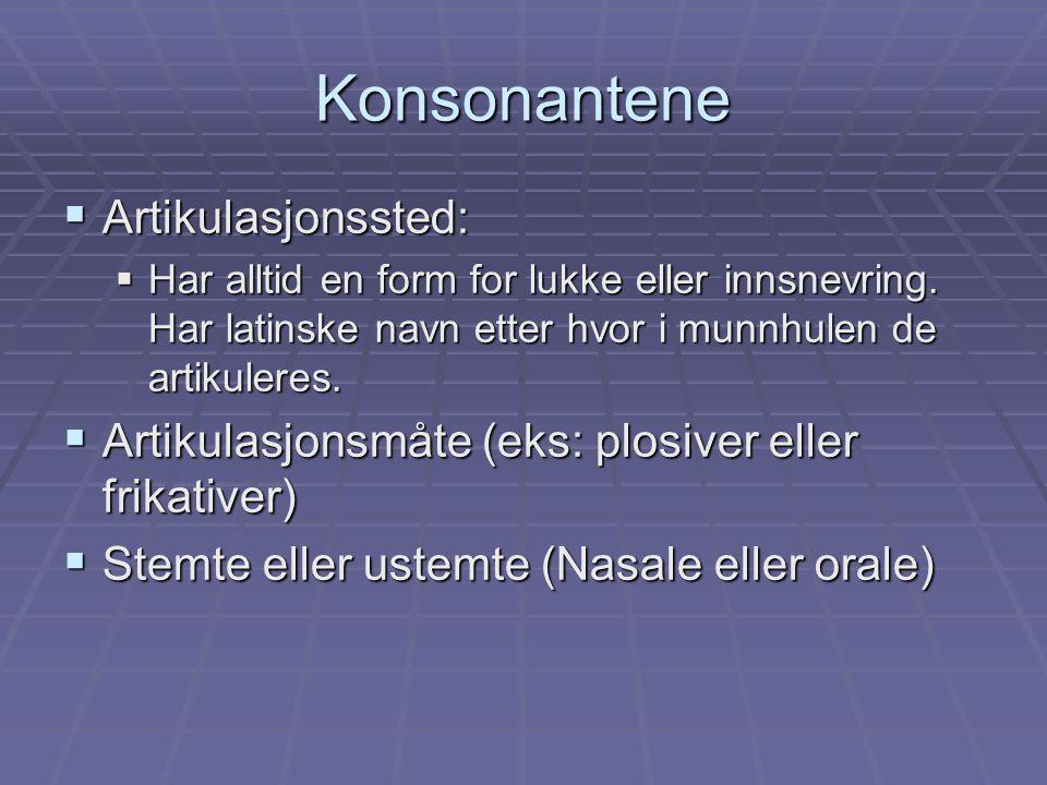 Konsonantene  Artikulasjonssted:  Har alltid en form for lukke eller innsnevring. Har latinske navn etter hvor i munnhulen de artikuleres.  Artikul