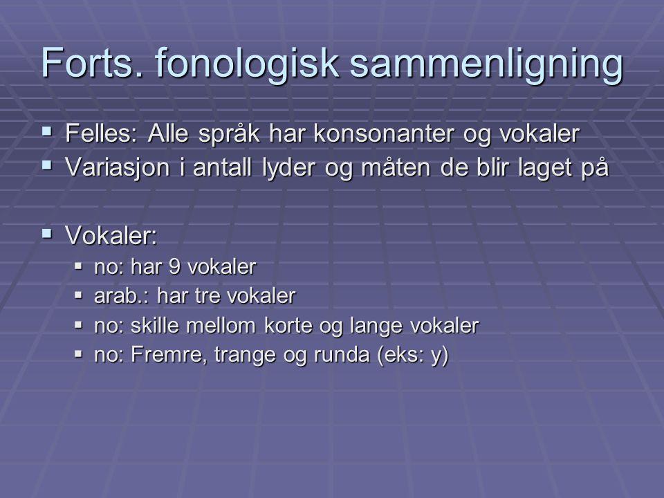 Forts. fonologisk sammenligning  Felles: Alle språk har konsonanter og vokaler  Variasjon i antall lyder og måten de blir laget på  Vokaler:  no:
