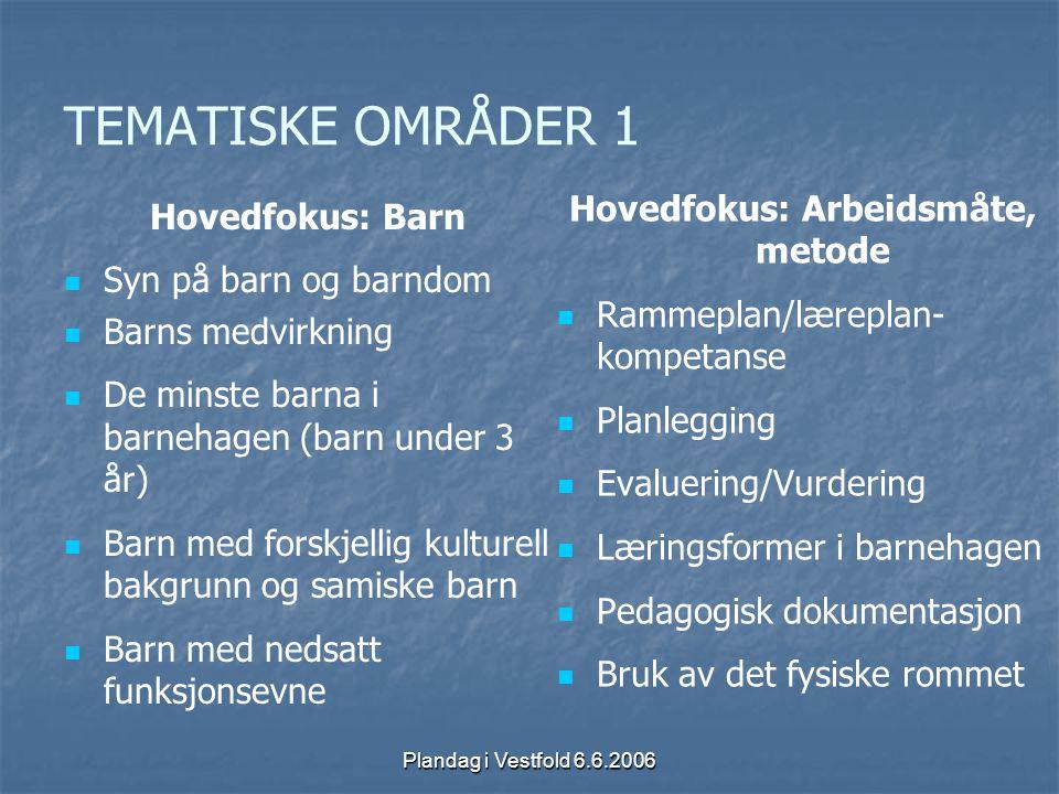 Plandag i Vestfold 6.6.2006 TEMATISKE OMRÅDER 1 Hovedfokus: Barn Syn på barn og barndom Barns medvirkning De minste barna i barnehagen (barn under 3 å