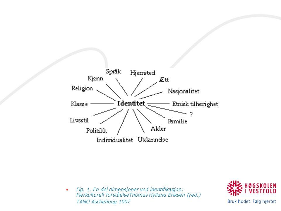 Fig. 1. En del dimensjoner ved identifikasjon: Flerkulturell forståelseThomas Hylland Eriksen (red.) TANO Aschehoug 1997
