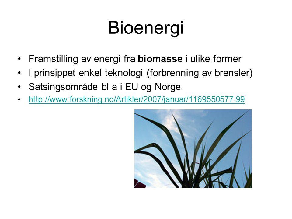 Bioenergi Framstilling av energi fra biomasse i ulike former I prinsippet enkel teknologi (forbrenning av brensler) Satsingsområde bl a i EU og Norge