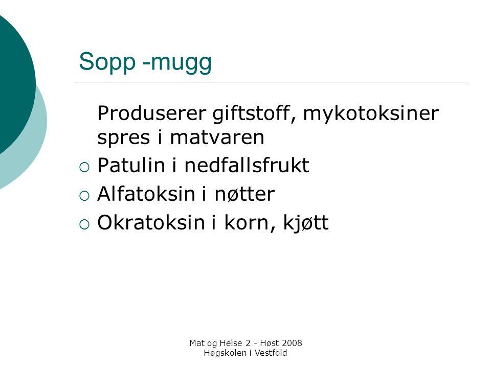 Mat og Helse 2 - Høst 2008 Høgskolen i Vestfold Sopp -mugg Produserer giftstoff, mykotoksiner spres i matvaren  Patulin i nedfallsfrukt  Alfatoksin